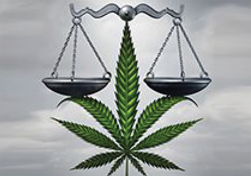 Dagga - just how legal is it now?