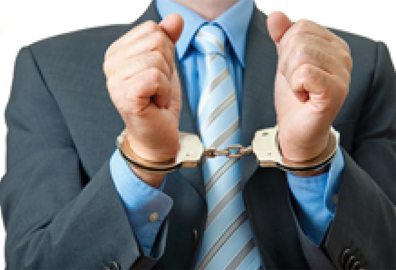 It Pays to Report Crime! First Offender's 20 Years in Prison Confirmed for R4.9m Fraud